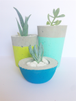 Concrete Plant Pot/Candle Holder Trio from Meraki By Design